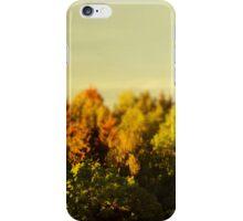 Summer Gold iPhone Case/Skin