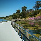 Rippleside Board Walk, Geelong by Joe Mortelliti