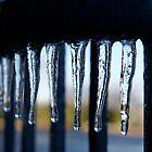 Frozen Claws by Leigh Ann Pobiak