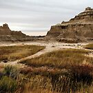 The Badlands by Becky39