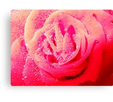 Red Delight Canvas Print