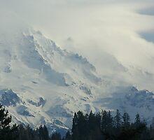 Rugged Peaks of Mt. Rainier by pallyduck