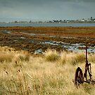 Beacon Point, view to Queenscliff by Joe Mortelliti