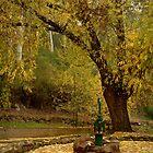 Pump,Central Springs Daylesford by Joe Mortelliti