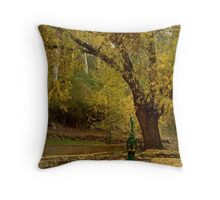 Pump,Central Springs Daylesford Throw Pillow