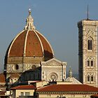 The Famous Landmark of Florence, Italy by Lucinda Walter