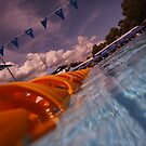 Swim by Harvey Schiller