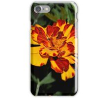 Taking a walk on the wild side.. iPhone Case/Skin
