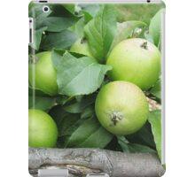 How Do You Like Them Apples? iPad Case/Skin