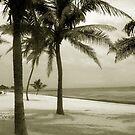 Empty Beach by Susanne Van Hulst