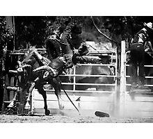 Broncos and Bulls # 16 Photographic Print