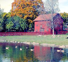 Traditional Barn and Pond, Stockholm, Sweden by Susan Wellington