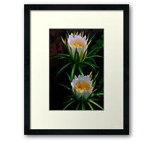 Queen of the Night ~ Deer-Horn Cactus Framed Print