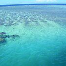 Fijian waters by Tisa