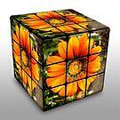 Rubics Cube - Orange by EdsMum