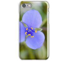 spiderwort iPhone Case/Skin