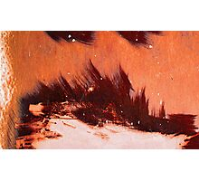 brush fire Photographic Print