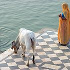 On the Ghats. Pushkar by Claude  Renault