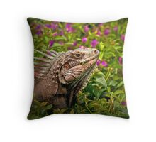 Afternoon Munchies Throw Pillow