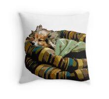 Sleepy Dog Throw Pillow