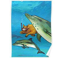 PIG - THE DOLPHINS Poster