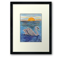 A Graceful Swan Framed Print