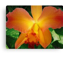 Day Flame Canvas Print