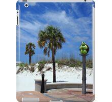 Turtle Beach, Clearwater iPad Case/Skin