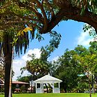 Tropical Park Gazebo by robert cabrera