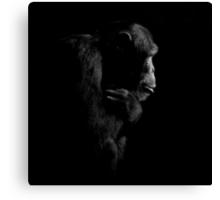 Primate Portraits ~ Part One Canvas Print