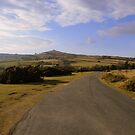 Dartmoor: The Road to the Church by Rob Parsons