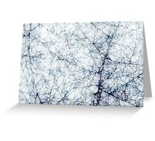Shards of the Frost Greeting Card