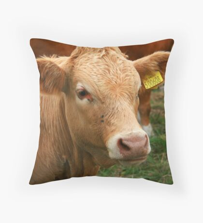 I Need A Name, Not A Number Throw Pillow
