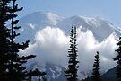 Mt. Rainier in Summer by skreklow