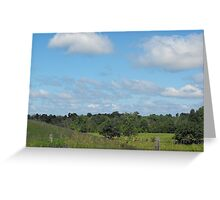 Cows and Pasture Greeting Card