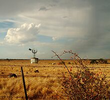 Passing Rain,Rural Geelong by Joe Mortelliti