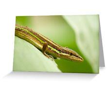Chinese Green Striped Lizard Profile Greeting Card