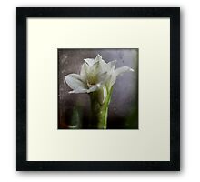 paper shadow Framed Print