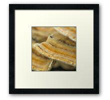 Tree Fungi - Super Macro Framed Print