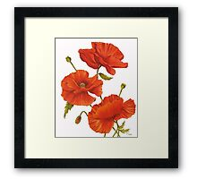 Poppies on White Framed Print
