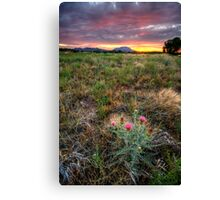 Bloom to Mountain Canvas Print
