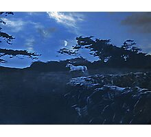 west fairy fort Photographic Print