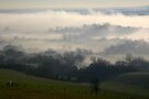 Glynde Mist by mikebov