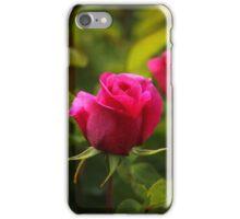 Lovely rose iPhone Case/Skin