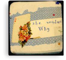 she wonders why? Canvas Print