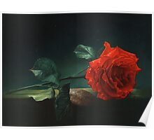 Lonely rose Poster