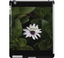 Grateful - collaboration with Photography by Paloma iPad Case/Skin