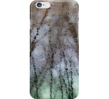 Crépuscule printanier iPhone Case/Skin