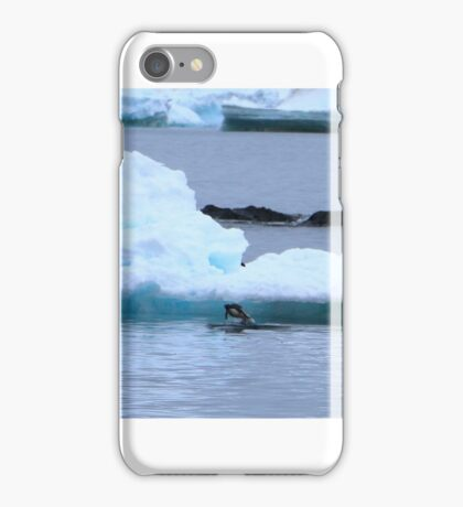 Adelie Penguins in Antarctica, 8 iPhone Case/Skin