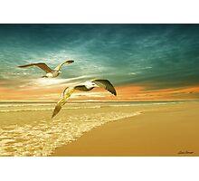 Soft Sunrise on the Beach 6 Photographic Print